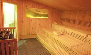 Tenha uma Sauna em Casa