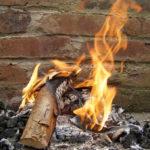 Uso de Cinzas de Lareira na Horta e Jardim