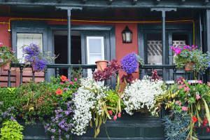 grades varanda flores