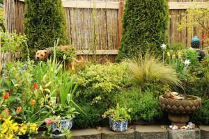 jardim plantas