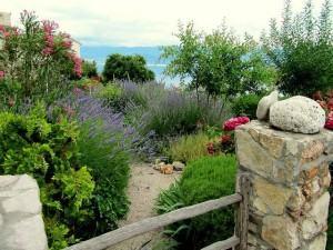 O Jardim Estilo Mediterrâneo