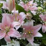 Como Fazer Lindos Buquês de Flores