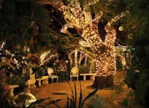 decoração externa natal