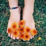 Cremes de Ervas Aromáticas para os Pés
