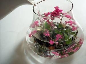 flores submersas