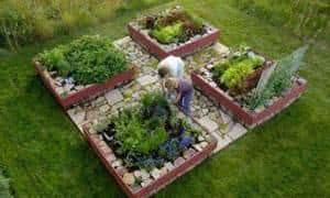 horta canteiros