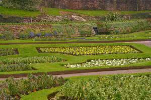 terreno horta