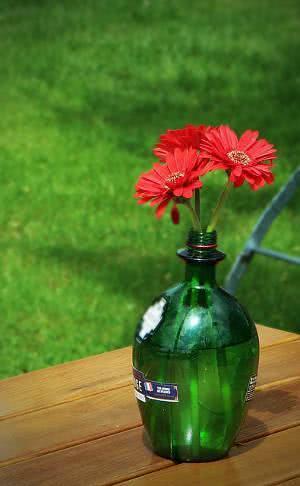 garrafa flores