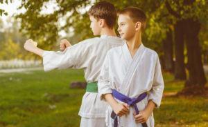 A Arte Marcial Ideal para a Criança