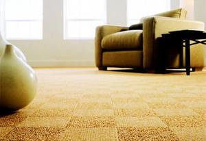 carpete sofá sala