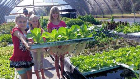 aquaponia-meninas-cultivo