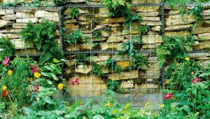gabiao-plantas