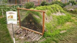 Como Plantar com a Técnica do Hugelkultur