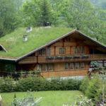 Sistemas para Montar um Telhado Verde