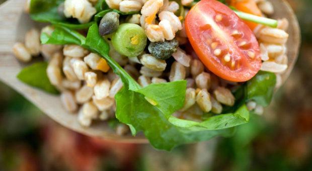 Alimentação Vegana sem Mistério