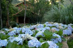 Jardins em Regiões Serranas do Sudeste