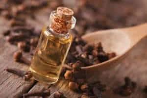 óleo essencial cravo