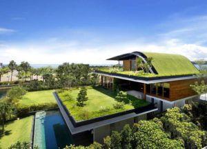 Telhado Verde: Jardins sobre Telhados
