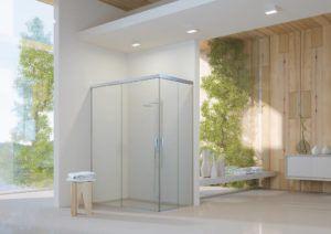 Box do Banheiro: Escolha o Ideal
