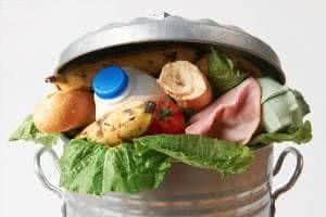 lixo alimentos
