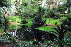 Como Projetar um Jardim Natural