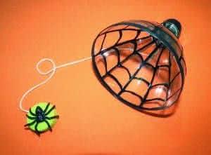 biboque teia aranha