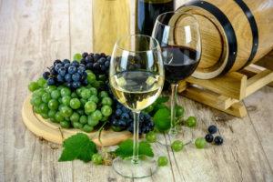 Conheça as Principais Variedades de Vinho