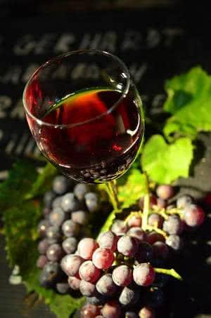 vinho tinto uvas