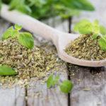 Principais Medicinais para Plantar em Casa e Cuidar da Saúde