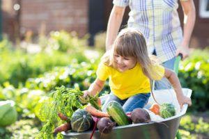 Veganismo: Muito Além da Alimentação