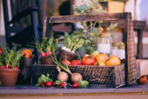 Como Montar uma Horta Orgânica em Casa