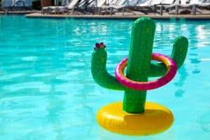 cacto de piscina