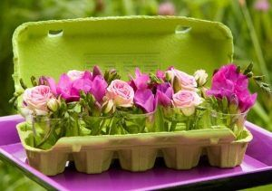 caixa de ovos vasos flores