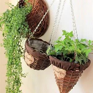 cestas plantas suspensas