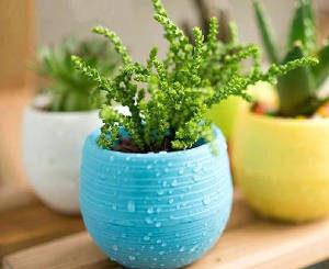 vasos feitos de plástico