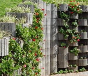 plantas em muros de pedra ou blocos de concreto