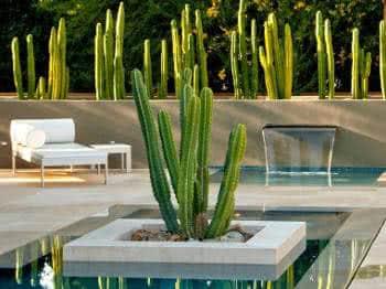 paisagismo da piscina