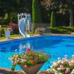 Plantas para piscinas em regiões amenas e mais frias