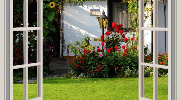 Como ter um jardim florido em todas as estações