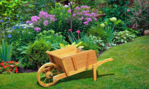 Como ter um jardim florido o ano inteiro
